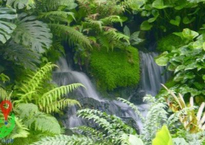 A waterfall in the Singapore botanical garden ExplorerLink