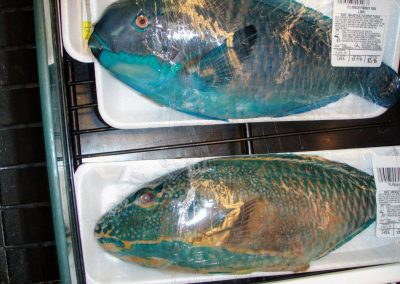 Parrot fish in a grocery store in Guam